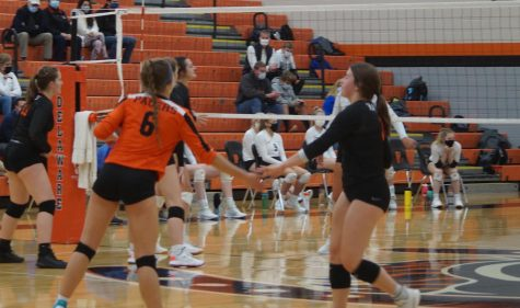 Volleyball photo of high five