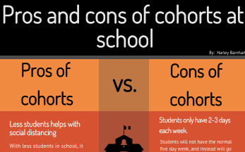 Pros and cons of cohorts