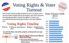 snapshot of voter turnout graphic