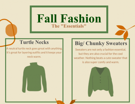 screenshot of fall fashion graphic