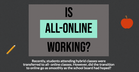 Student opinions on the December online learning period